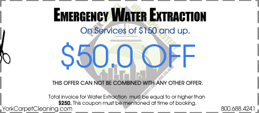 emergency water damage coupon